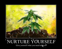 Nurture Yourself. Give yourself what you need to grow. #weedmemes #nurture #grow #marijuanamemes