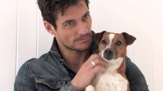 Screencaps - David Gandy and Battersea Dogs & Cats Home - David James Gandy