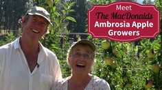 Meet Your BC Ambrosia Apple Growers - Denise and Richard MacDonald