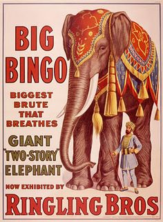 "New Ringling Bros Circus Poster ""Bingo the Elephant""- Vintage Reproduction Circa 1916 Old Circus, Circus Art, Circus Theme, Circus Room, Circus Birthday, Circus Nursery, Circus Train, Circus Clown, Night Circus"