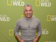 """Los Angeles County Animal Control is currently investigating an incident involving """"Dog Whisperer"""" Cesar Millan based on a scene from his Nat Geo WILD series """"Cesar 911."""""""