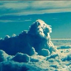 """The Lion of Judah """"Aslan a man! Beaver said sternly. I tell you he is the King of the wood and the son of the great Emperor-Beyond-the-Sea. Don't you know who is the King of Beasts? Aslan is a lion—the Lion, the great Lion. Angel Clouds, Sky And Clouds, Cool Pictures, Beautiful Pictures, Cool Photos, Cloud Shapes, Lion Of Judah, Chronicles Of Narnia, Beautiful Sky"""