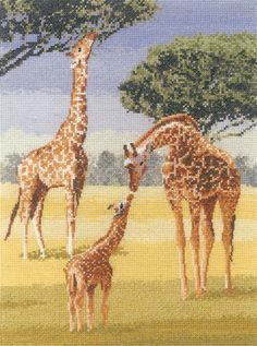Giraffes – Power and Grace Cross Stitch Kit By Heritage Crafts