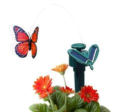 Fluttering Solar & Battery Powered Butterfly with Ground Spike - Monarch Orange . $10.99. Nope, it's not magic... it's our Solar Butterfly!  Place the stake with solar panels in your outdoor garden, or inside in your favorite potted plant!  Our Solar Butterfly soars around fluttering it's wings just like a real butterfly.