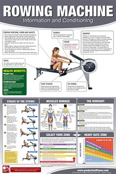 Rowing Machine Professional Gym Fitness Wall Chart Poster (Female Edition) - Productive Fitness