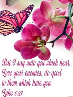 Luke 6:27 KJV