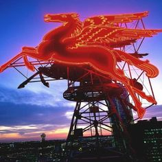Pegasus ~ the focal point of the Dallas skyline in my childhood! Dallas Activities, Dallas Skyline, Vintage Neon Signs, Dallas Morning News, Loving Texas, Texas Pride, Texas Homes, Dallas Texas, Dallas Downtown
