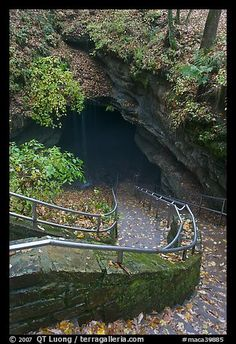 Steps leading down into the largest known cave in the world: Mammoth Cave National Park -- Kentucky