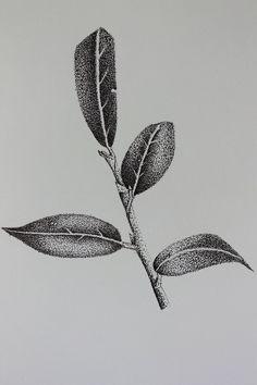 Branch - Pointillism study by TClark on DeviantArt Stippling Drawing, Shading Drawing, Drawing Tips, Ink Pen Art, Pencil Art Drawings, Pen Sketch, Art Sketches, Hatch Drawing, Dotwork Tattoo Mandala