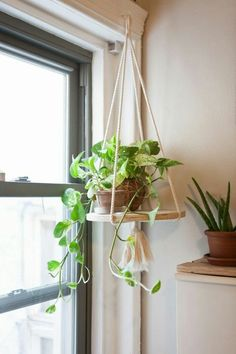 Beautiful DIY indoor hanging plants for your home. Over twenty five DIY indoor hanging plants decor ideas. Feed your design ideas now. Window Hanging, Hanging Planters, Indoor Hanging Plants, Indoor Plant Hangers, Hanging Plant Diy, Outdoor Plants, Window Sill, Hanging Baskets, Indoor Plant Decor