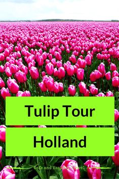 Spring is the best time of the year to be in Holland. All the Tulip Fields are in full Bloom, they are beautiful!! There are routes to take to see it all!
