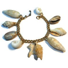 Seashell charm bracelet natural shells on a gold tone link chain ($12) ❤ liked on Polyvore