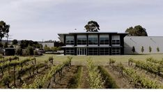 Our head office is nestled in the gorgeous McLaren Vale region of South Australia. How beautiful is our view! South Australia, How Beautiful, Vineyard, Cabin, House Styles, Outdoor, Inspiration, Home Decor, Vine Yard