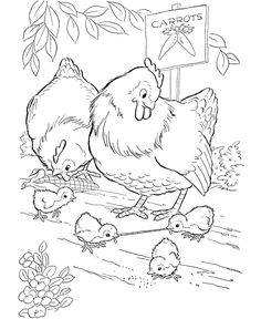 Farm animal chicken coloring page | Early bird gets the worm