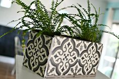 Make a DIY Planter Box Out of Inexpensive Decorative Tiles! Make a Pretty DIY Planter Box from Cheap Diy Cement Planters, Diy Planter Box, Indoor Planters, Hand Planters, Planter Ideas, Ceramic Tile Crafts, Small Potted Plants, Tile Projects, Mosaic Diy