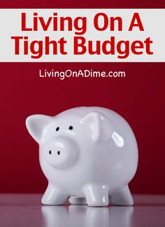 Debt Free Living- Part 3 – Living On A Tight Budget