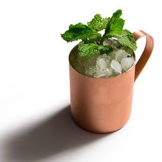 The Cocktail Quarterly, Vol. Seven destination-worthy cocktails from America's most iconic hotel bars. Moscow Mule Mugs, Yummy Drinks, Cocktails, Tableware, Sweet, Blog, Recipes, Travel, Craft Cocktails