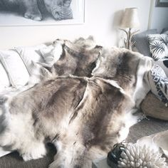 Reindeer Throw XL