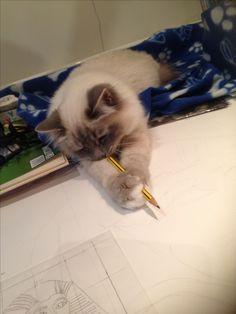 I WILL draw!!!!