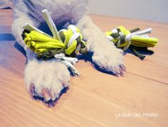 DIY: Turn some old tees into a dog toy. In Spanish. These are the steps in English: 1. Select three old shirts 2. Cut 24 strips of 3cm or 4cm wide (8 strips of each color) 3. Dividing the strips into two groups of 12 (4 strips for each color) 4. Braid each group separately 5. Entwine the two braids 6. Tie a knot at each end, cut the extra fabric 7. Play with your dog
