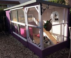 Get your rabbit a kennel like no other when you get Rabbit Kennels in the UK from us. Our Pet Kennels in the UK are customisable to suit your needs. Bunny Sheds, Rabbit Shed, Rabbit Hutch Plans, Outdoor Rabbit Hutch, Rabbit Run, Rabbit Hutches, Pet Rabbit, Bunny Cages, Rabbit Cages