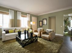 Living Room Wall Color model homes interior paint colors | paint color ideas – bedroom
