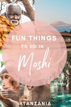 A list of fun things to do in Moshi before your Mount Kilimanjaro Klimb. From budget safari options to culturally-immersive times with the Maasai and natural pools in the middle of nature, Moshi is a paradise for nature and culture lovers who want to explore northern Tanzania beyond the tourist trail #Tanzania #Moshi #Kilimanjaro #Arusha #Kikuletwa #Africa