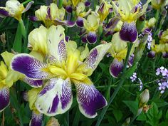 Just beautiful!
