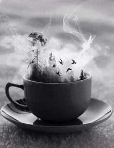 ♥ Čitav svet u samo jednj šoljici kafe! ♥ DoBrO JuTrO