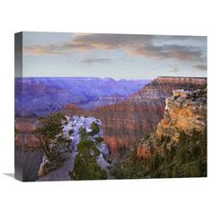 Global Gallery Wotans Throne from South Rim Grand Canyon National Park Arizona Wall Art - GCS-396704-2024-142