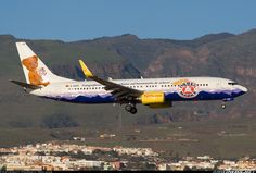TUIFly BAEREN MARKE Boeing 737-8K5 @ LPA Aircraft Painting, Commercial Aircraft, Aircraft Pictures, Paint Schemes, Airplanes, Trains, Aviation, Automobile, Graphics