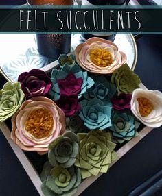 Risultati immagini per felt succulents Felt Diy, Handmade Felt, Handmade Flowers, Diy Flowers, Felt Crafts, Fabric Flowers, Paper Flowers, Flower Diy, Felt Flowers Patterns