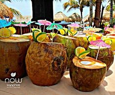 Paradise = a freshly prepared cool coconut on the beach at #NowSapphire! #UnlimitedVacationClub #Mexico #RivieraCancun #Paradise #beach #travel #traveling #TagsForLikes #TFLers #vacation #visiting #instatravel #instago #instagood #trip #holiday #photooftheday #fun #travelling #tourism #tourist #instapassport #instatraveling #mytravelgram #travelgram #travelingram #igtravel
