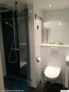 arabia toalett x