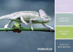 101 Color Combinations to Inspire Your Next Design – Chameleon Color Palette