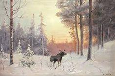 Bilderesultat for elgbilder Snow, Outdoor, Outdoors, Outdoor Games, The Great Outdoors, Eyes, Let It Snow