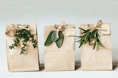 brown kraft paper bags with string and herbs, leaves and green foliage. natural look. Gift or present wrapping and packaging ideas.
