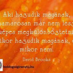 Légy őszinte önmagadhoz David Brooks, Brain Gym