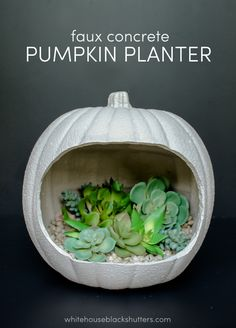 Faux concrete pumpkin planter, made from a craft pumpkin! How to from MichaelsMakers White House Black Shutters