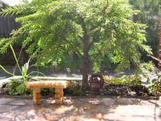 "Mini Garden with a 10"" tall Dwarf Canada Hemlock."