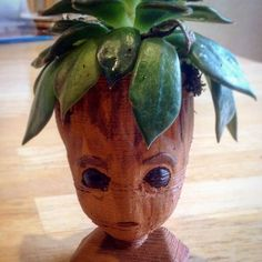 An awesome Groot planter for my son's plant! We scaled this to & sliced it in Cura. It took 3 hours and 20 minutes to print. Head Planters, Planter Pots, Baby Groot, 3d Printing, Carving, Metal, Wood, Awesome, Plants
