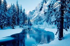 Blue Winter, beautiful, blue, forest, ice, mountain, nature, river, snow, trees, water, white, winter wallpapers