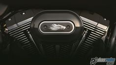 Linha Harley-Davidson Screamin' Eagle chega ao Brasil