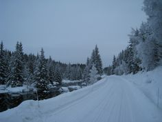 Driving home for Christmas. This is winter wonderland at Gautestad in Evje, Setesdal, Southern Norway.  Photo: Elisabeth Høibo©Visit Southern Norway