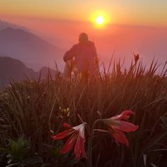 #tiarajufialho #ospreybrasil #trekking Trekking, Celestial, Sunset, Outdoor, Founding Fathers, Outdoors, Sunsets, Outdoor Games, The Great Outdoors