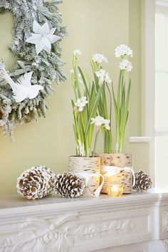 Amaryllis blooms may be tried-and-true, but you canmix it up with delicate paperwhites. Create your own white Christmas by wrapping the containersin birch bark and scatteringsnow-spritzed pinecones. Get the tutorial»