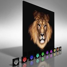 Lion face and #lions head square  canvas print #large #picture wall art,  View more on the LINK: 	http://www.zeppy.io/product/gb/2/371705497394/