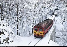 RailPictures.Net Photo: 418 204 Hungarian State Railways (MÁV) 418 at Vinye , Hungary by Norbert Horváth