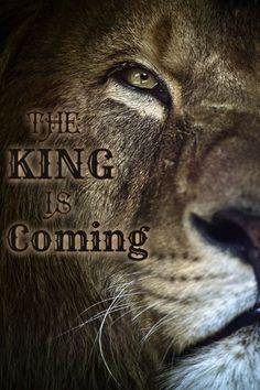 """The Lion of Judah"" Revelation 5:5 - King Jesus Christ!! He is coming…"