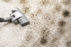 7 Ways to Save on Carpet Cleaning | Stretcher.com - Keep your carpets looking better, for longer, for less